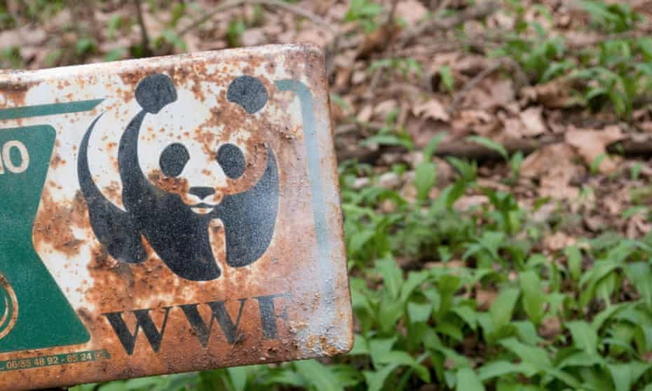 Human rights specialists are to lead an independent review of the conservation charity