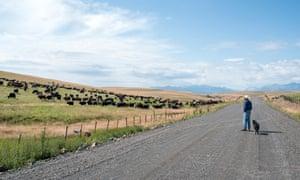 Rancher Dan Probert watching his cattle on the Zumwalt Prairie in Northeast Oregon.