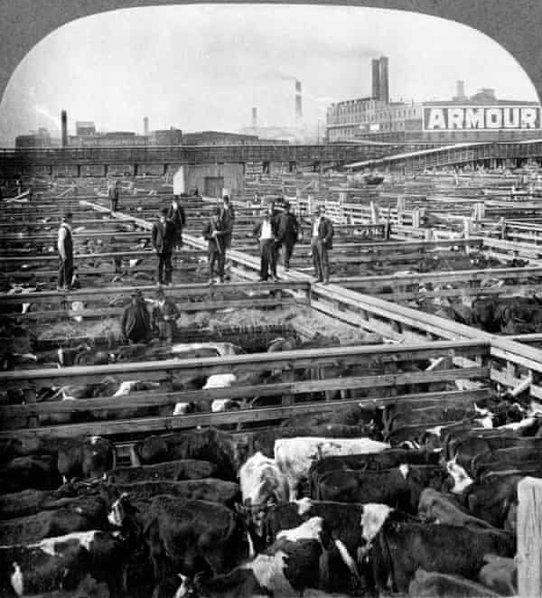 Union Stock Yard in Chicago in 1909.