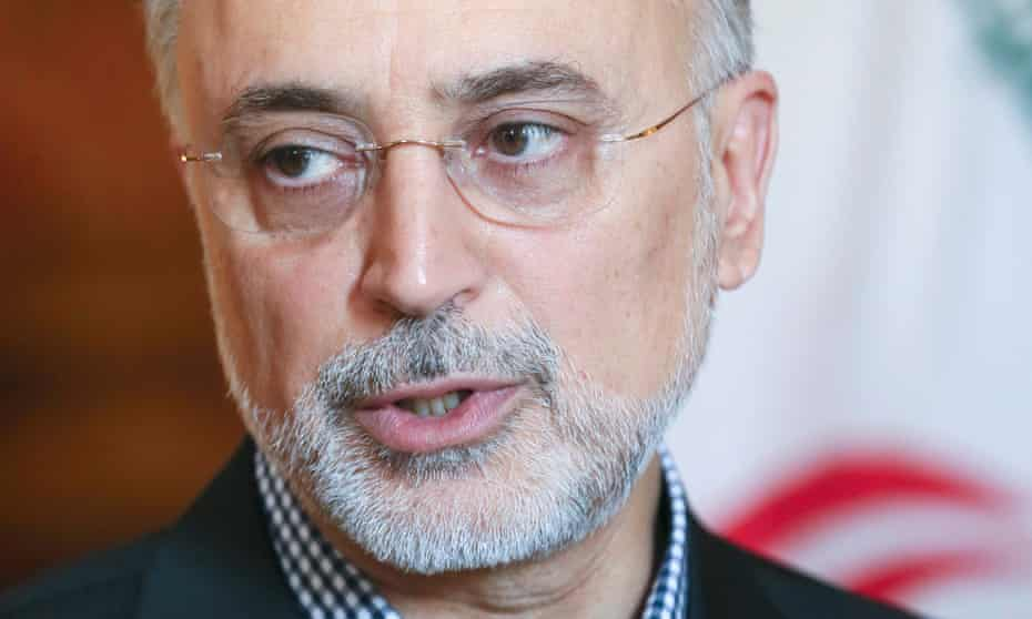 Iranian vice president and head of the country's Atomic Energy Organisation Ali Akbar Salehi, who visited London to speak at the World Nuclear Association symposium.