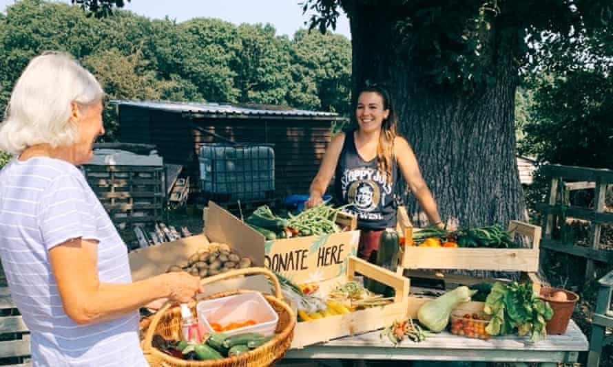 Allotment holders in Brentwood, Essex donated surplus produce for local food banks and families in need.