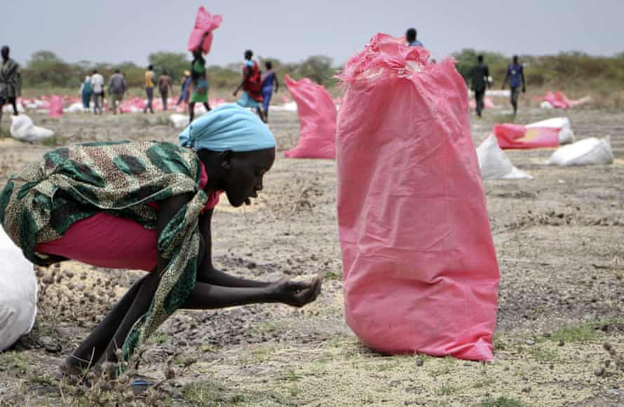 A woman scoops sorghum grain off the ground
