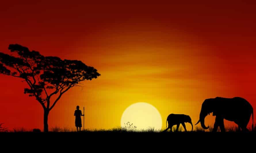 Elephants with a Maasai warrior.