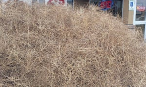 One person was trapped for two hours until work crews could remove the tumbleweed.