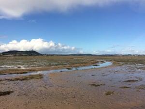 Mudflats at Strangford Lough.
