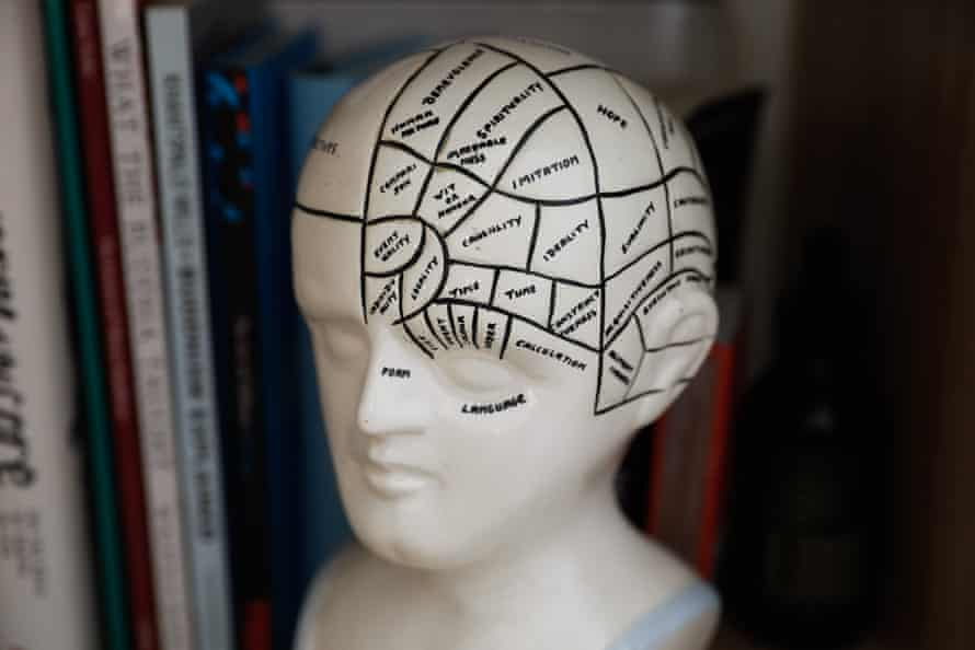 A map of the human brain drawn on a bust of a head