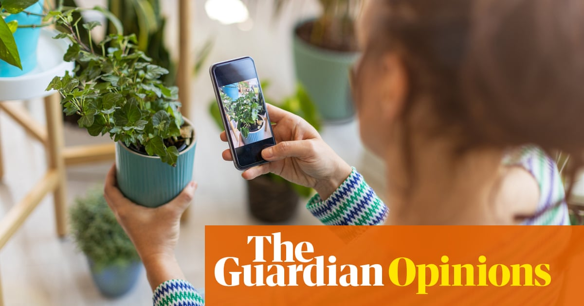 My son is far from home – and all he misses is the plants
