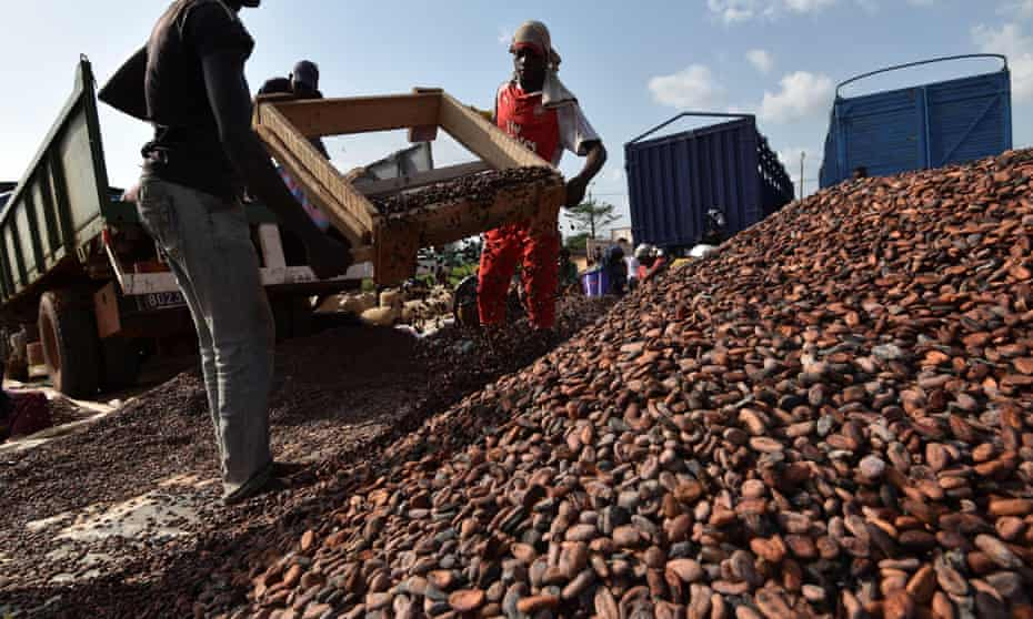Workers at a cocoa sorting centre in Sobre, Ivory Coast