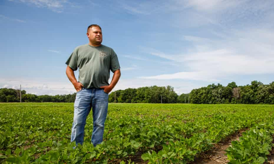 Farmer Ryan Mickelson walks through a field of soya beans Friday in Duncombe, Iowa.