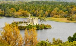 Castle Island near Boyle, County Roscommon.
