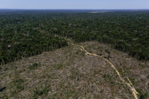 Deforested land in Apui, in the southern region of the state of Amazonas, Brazil