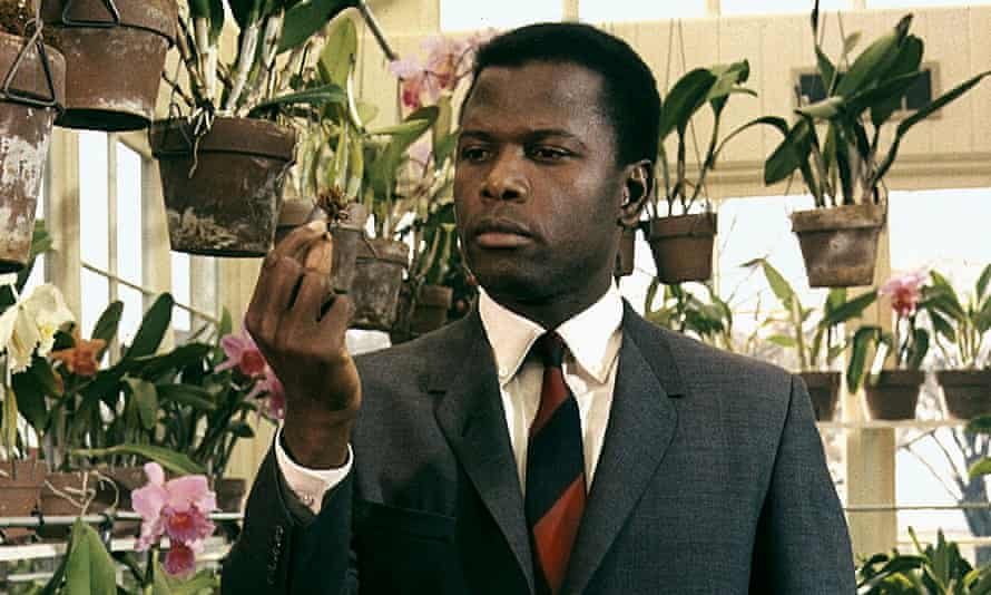 Sidney Poitier in In the Heat of the Night (1967).