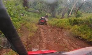 Buggies go off-road through a cattle property near Port Vila