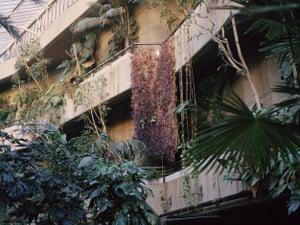 The Barbican Estate conservatory