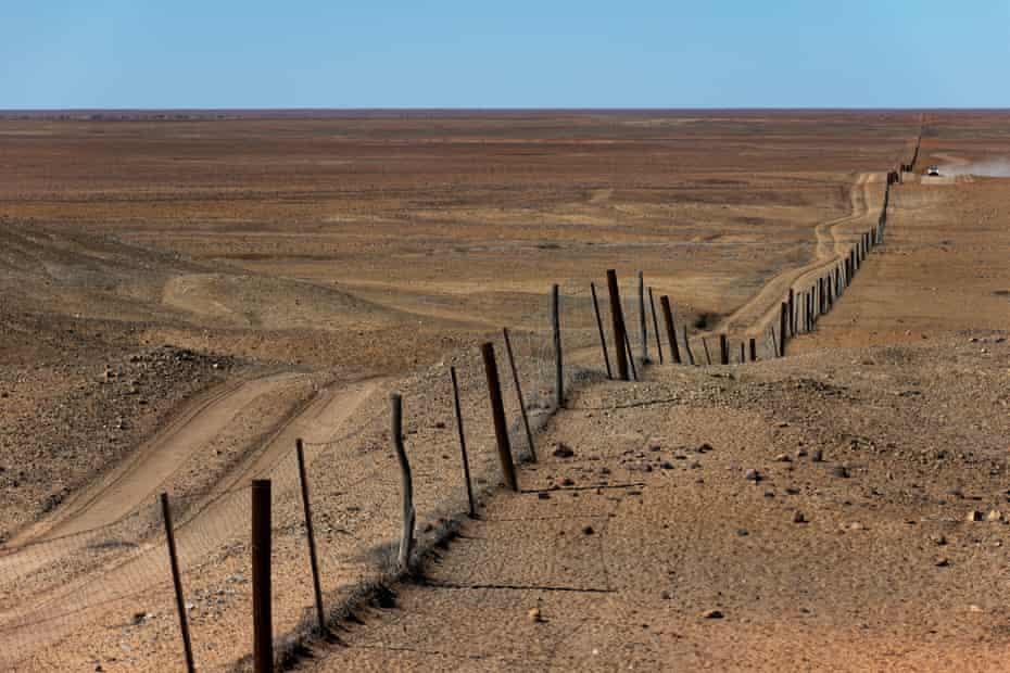 The dingo fence near Coober Pedy