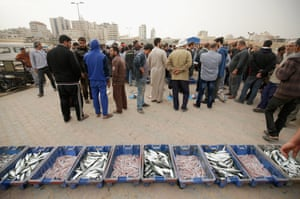 Fish are displayed at the Gaza sea port before being sent to the market