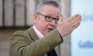 Michael Gove was said to have been livid about the contents of a document outlining Theresa May's ideas for a new customs partnership.