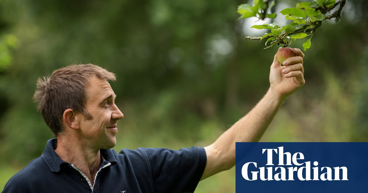 'Why not start now?' On the track to regenerative farming