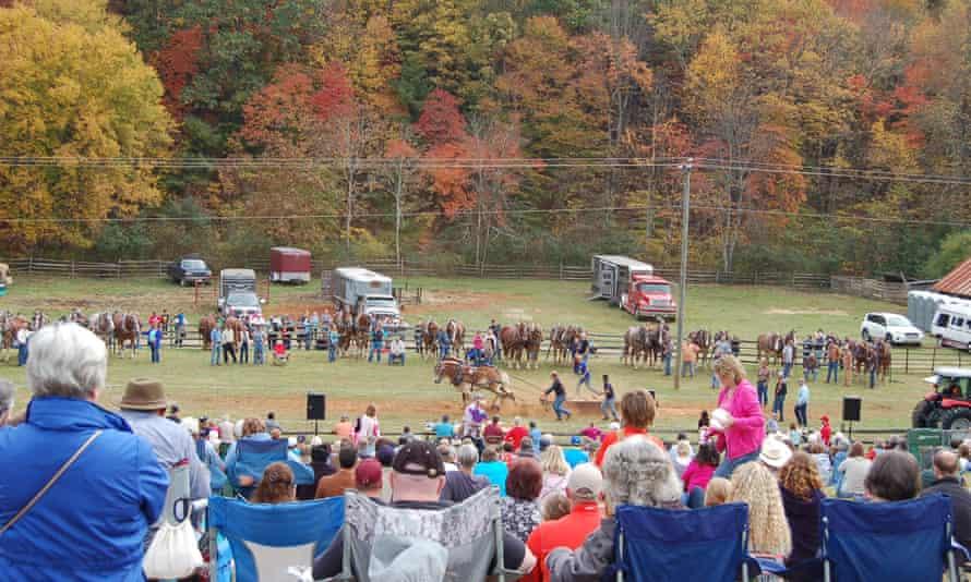 Horse Pullling competition at the Blue Ridge Folklife Festival, Ferrum, Virginia.