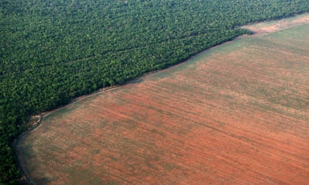 FILE PHOTO: The Amazon rain forest, bordered by deforested land prepared for the planting of soybeans, is pictured in this aerial photo taken over Mato Grosso state in western Brazil<br>FILE PHOTO: The Amazon rain forest (L), bordered by deforested land prepared for the planting of soybeans, is pictured in this aerial photo taken over Mato Grosso state in western Brazil, October 4, 2015. Picture taken October 4, 2015. REUTERS/Paulo Whitaker/File Photo