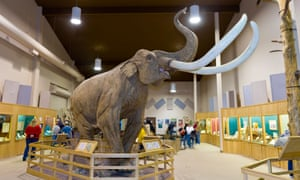 Wooly mammoth, The Mammoth Site