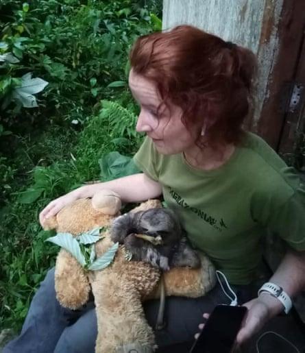 Louisa Baillie feeds a baby sloth.