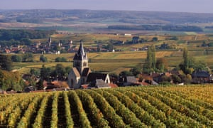Champagne vineyards in Reims … Robert Walters investigates the business of fizz.