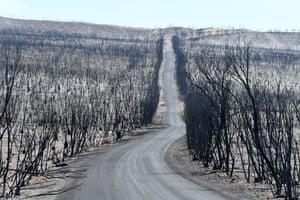 The aftermath of bushfires on Kangaroo Island, South Australia.