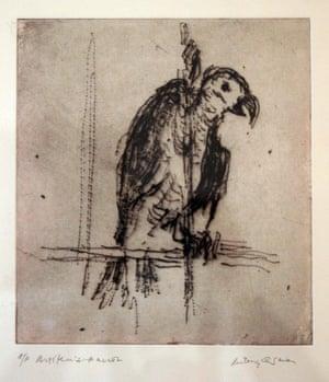 Britten's Parrot by Milein Cosman.