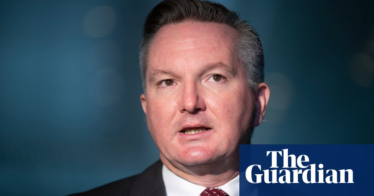 Chris Bowen says Labor needs to win back supporters who have been 'looking elsewhere'