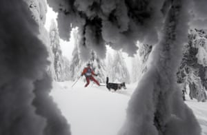 A man on cross-country skis