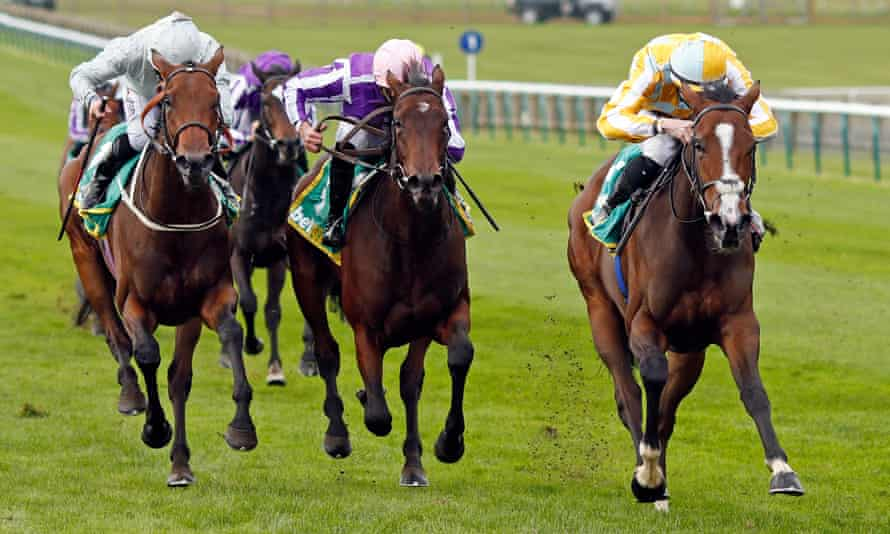 The Fillies' Mile was won by Pretty Gorgeous (right) but there was confusion as Mother Earth (centre) was called as Snowfall during the race.