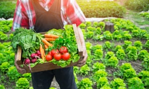 Restaurants can go carbon-neutral by changing the way they grow, ship, cook and dispose of food.