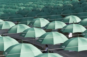 A woman reads a book under an umbrella in Seoul