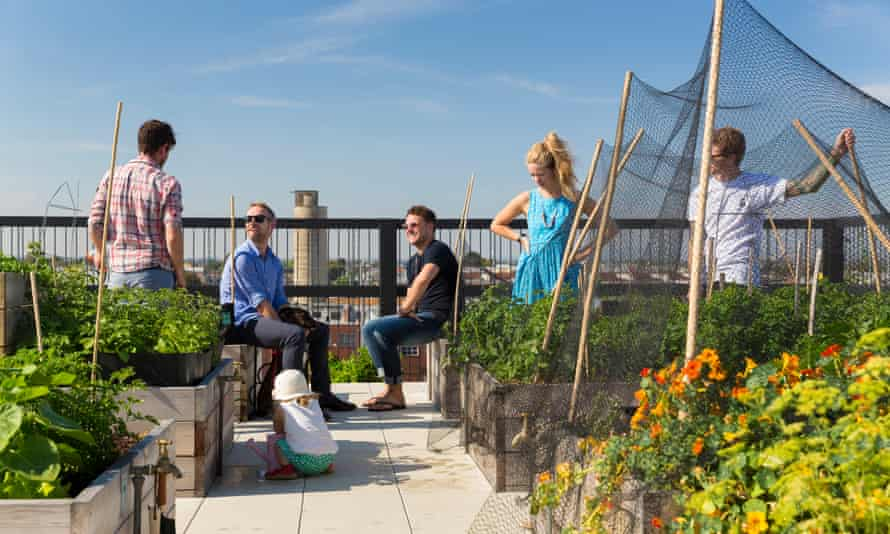 The roof terrace of The Commons development in Melbourne.