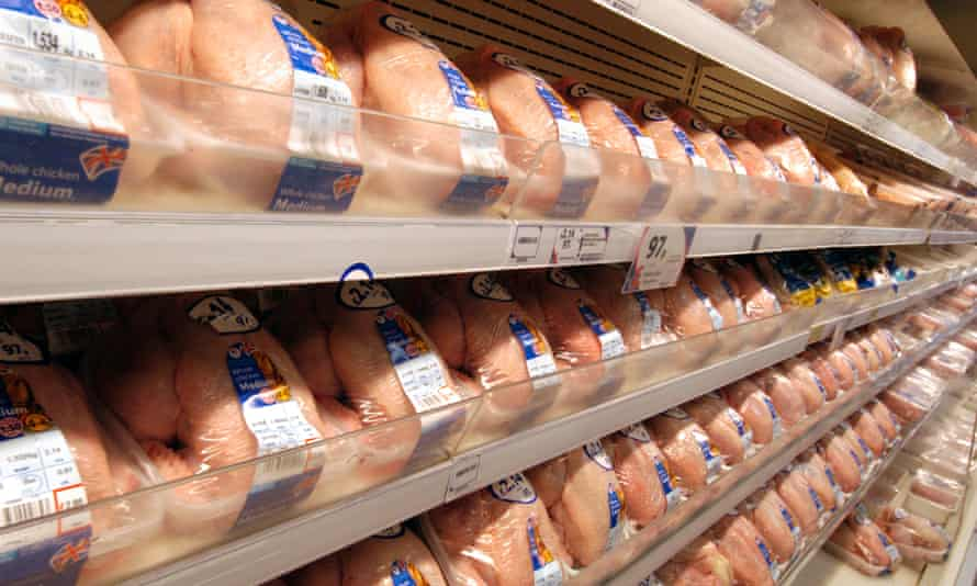 Rows of chickens in Tesco Extra