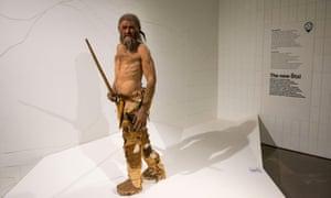 a reconstruction of Ötzi in Bolzano's museum.