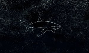 Baidam the Shark in the North from virtual reality game created by Rhett Loban