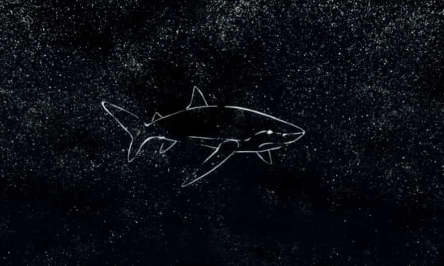 Baidam the Shark in the North from virtual reality game created by Rhett Loban