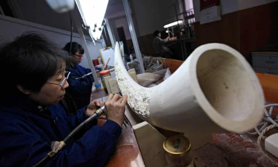 Chinese artists work on ivory sculptures in the Beijing Ivory Carving Factory in Beijing.