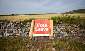 A Vote Leave poster is seen in a field.