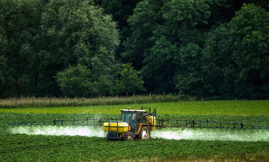 A farmer sprays pesticides on to crops in Bailleul, France.