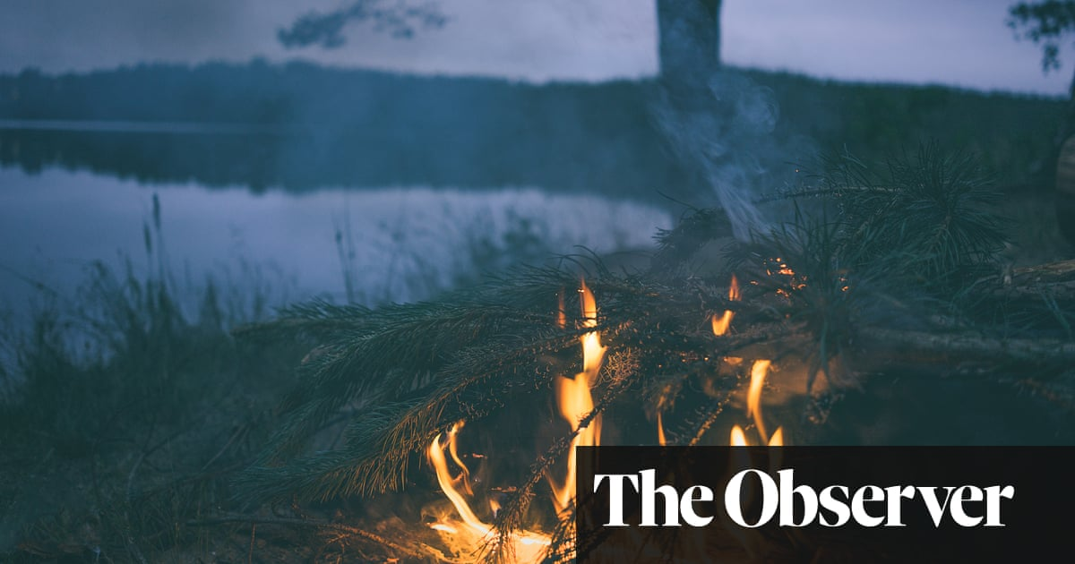 The best recent thrillers – review roundup | Books | The