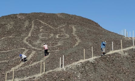 A 37-meter kitten: a new figure appears among the Nazca geoglyphs.