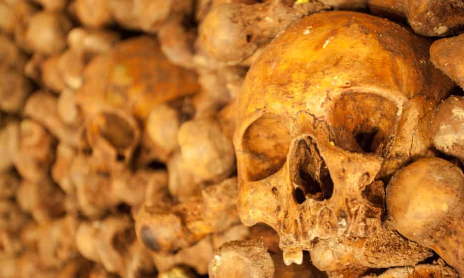 'It's rare to find a skull away from the official Paris Catacombs, but it does happen occasionally,' says Bertrand Robion.