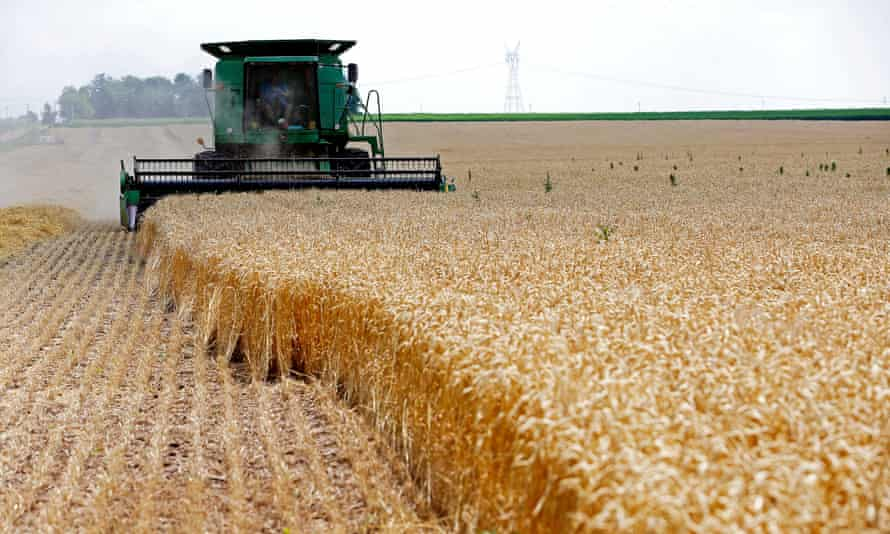 A wheat farm in Dixon, Illinois. With the global population set to rise to more than 9bn by 2050, the UN estimates food production will have to increase by about 70%.