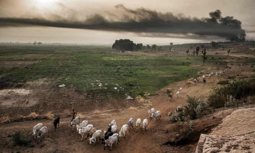 Hausa-Fulani pastoralists in the outskirts of Sokoto. In Nigeria climate change has hit agricultural yields while insecurity has made some areas harder to farm.