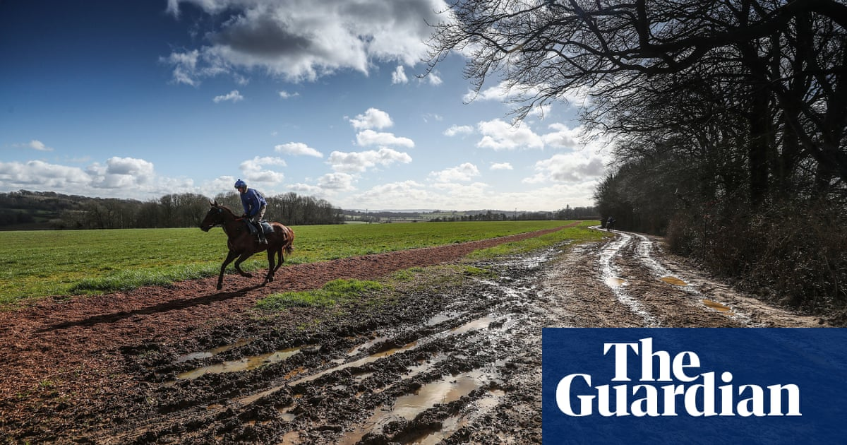 Talking Horses: Colin Tizzard blames sticky ground for recent defeats