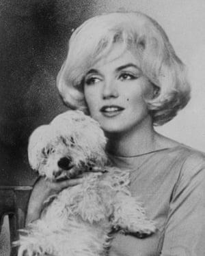 Marilyn Monroe with her dog, Maf.