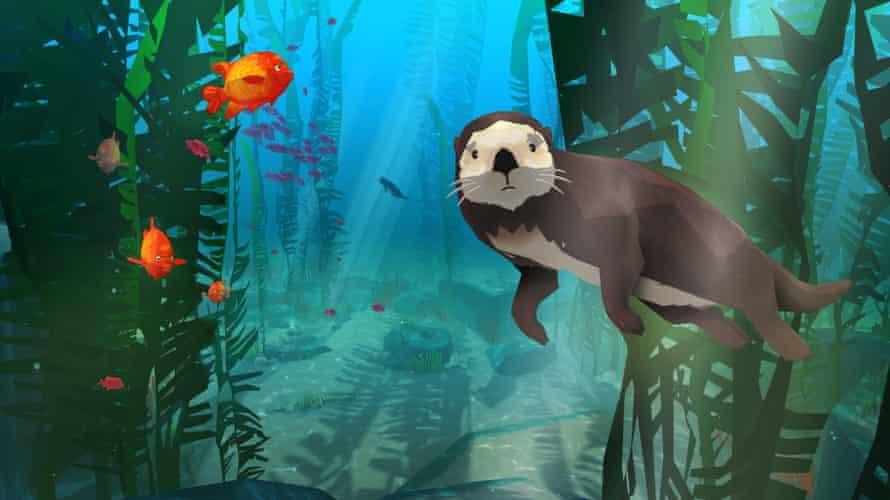 Sea otter's-eye view … Life in VR: California Coast.